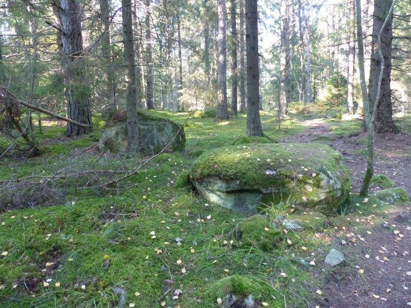 Natur in Schweden 3